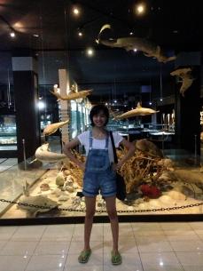Shell Museum, Kuta, Bali