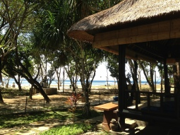 Good food in Bebek Bengil, Nusa Dua Bali